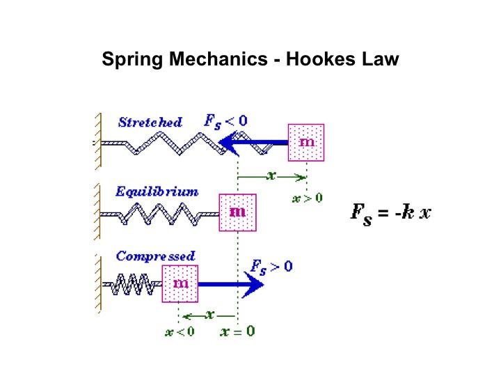 Hooke's Law