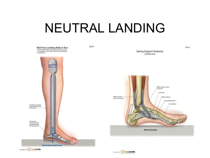 Neutral Landing